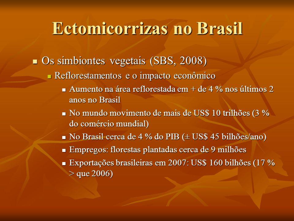 Ectomicorrizas no Brasil Os simbiontes vegetais (SBS, 2008) Os simbiontes vegetais (SBS, 2008) Reflorestamentos e o impacto econômico Reflorestamentos
