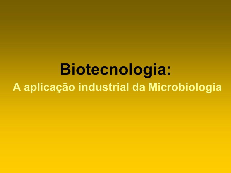 Produtos de síntese microbiana Enzimas * amilases: adesivos, sucos * invertase (sacarose): cremes, xaropes * proteases: couro, seda, detergentes * pectinases: sucos, linho * condroitinase: recuperação de injúrias da coluna