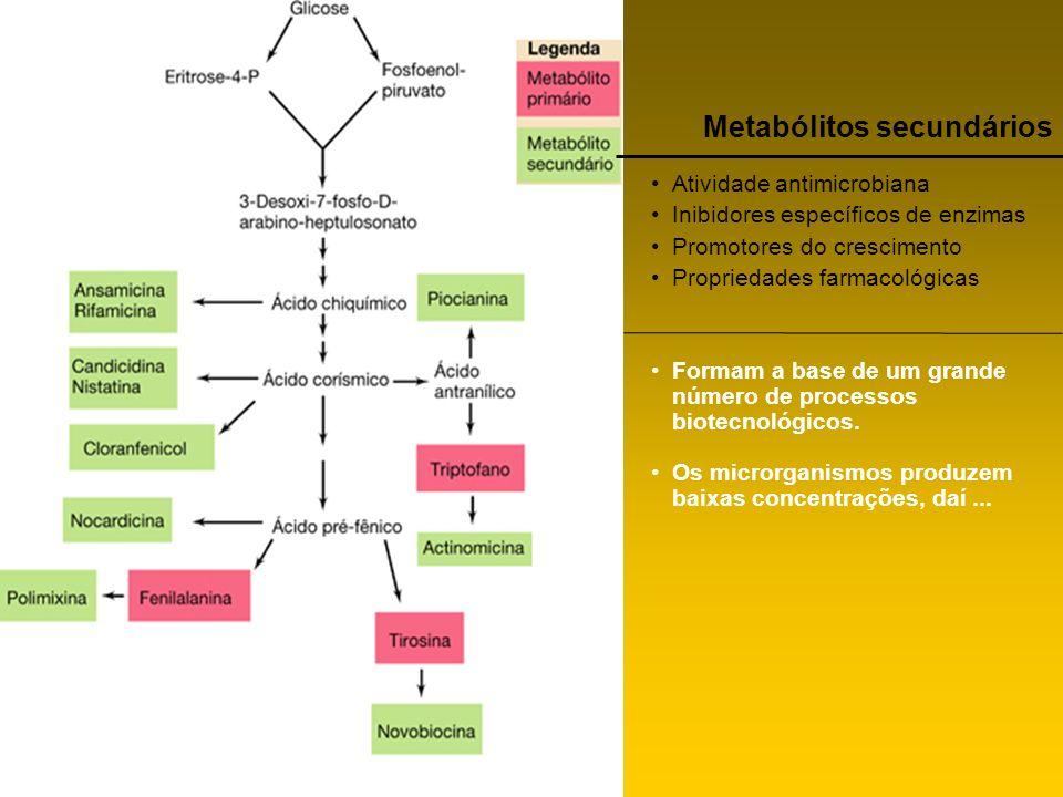 Metabólitos secundários Atividade antimicrobiana Inibidores específicos de enzimas Promotores do crescimento Propriedades farmacológicas Formam a base
