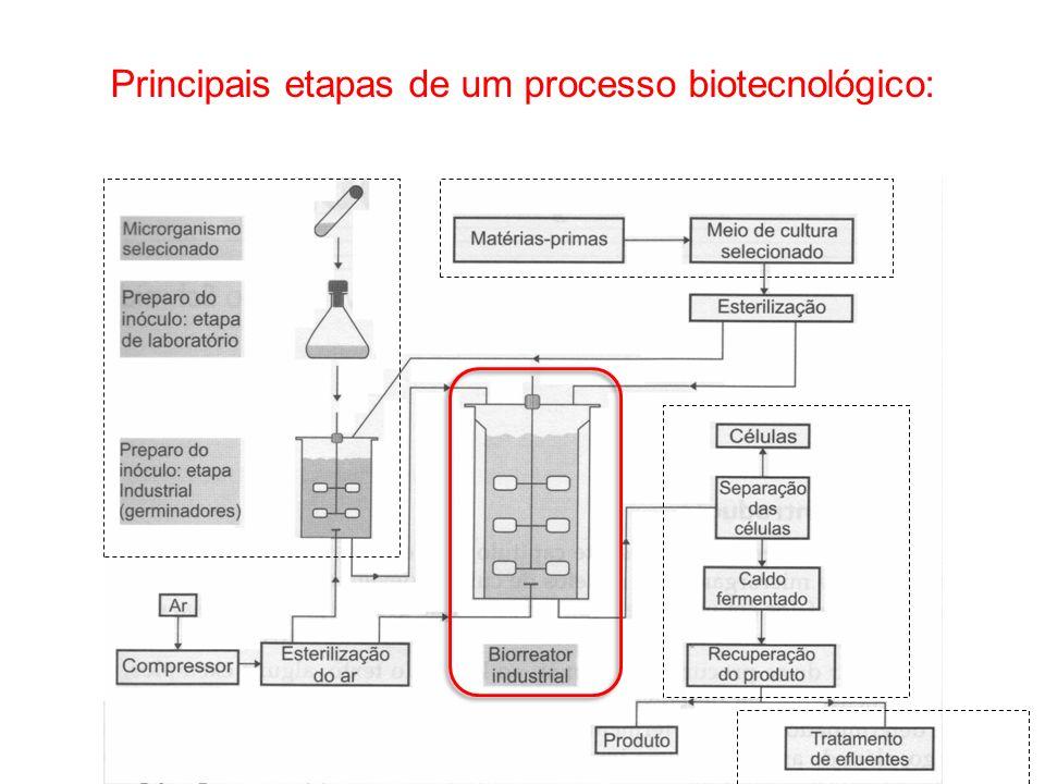 Principais etapas de um processo biotecnológico:
