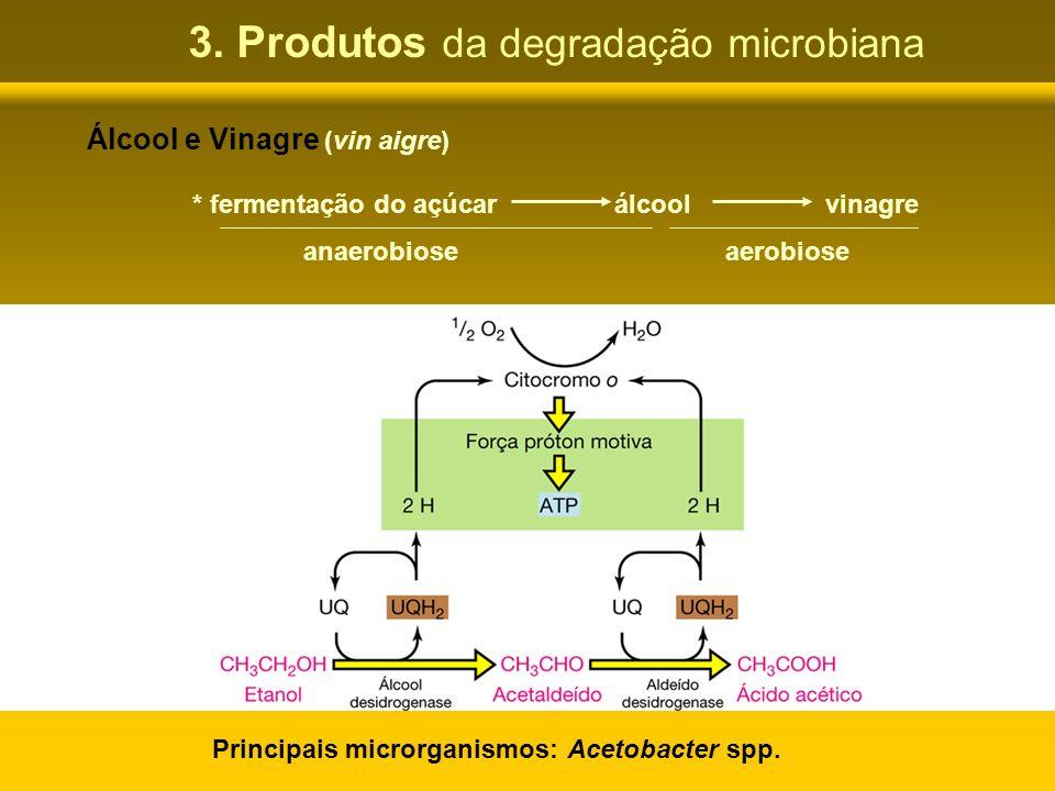 3. Produtos da degradação microbiana Álcool e Vinagre (vin aigre) * fermentação do açúcarálcoolvinagre anaerobioseaerobiose Principais microrganismos: