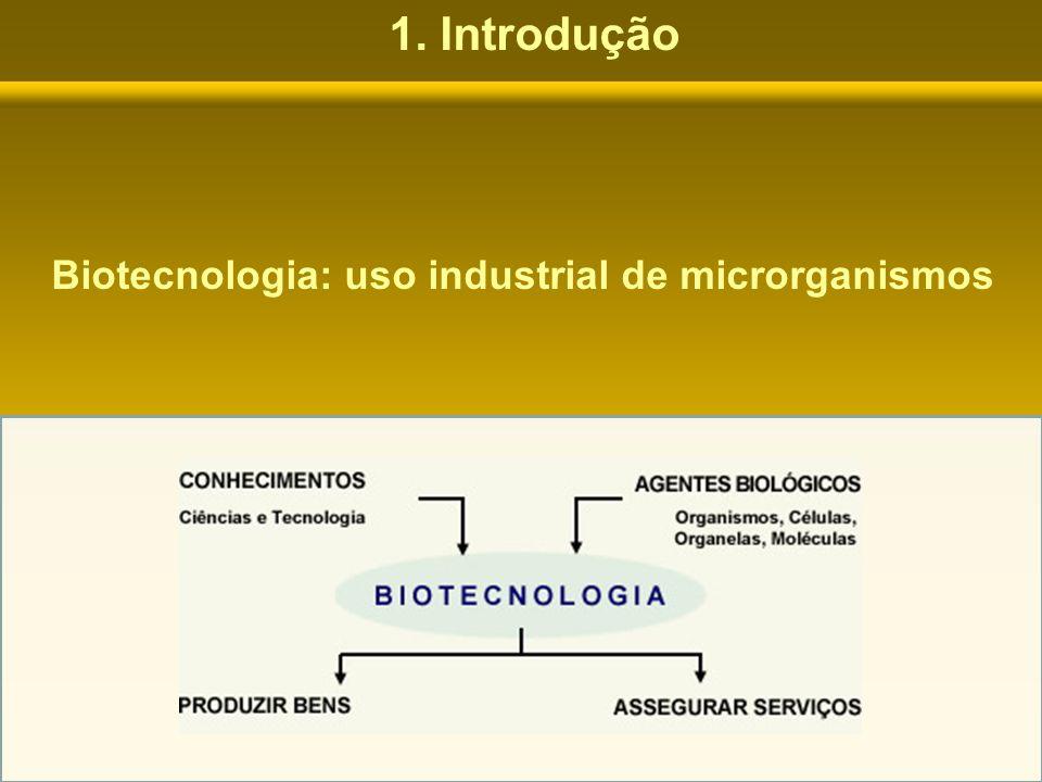 Conjunto de técnicas que: Permite à Indústria Farmacêutica cultivar microrganismos para produzir os antibióticos que serão comprados na Farmácia.