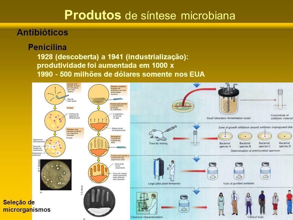 Produtos de síntese microbiana Antibióticos Penicilina 1928 (descoberta) a 1941 (industrialização): produtividade foi aumentada em 1000 x 1990 - 500 m