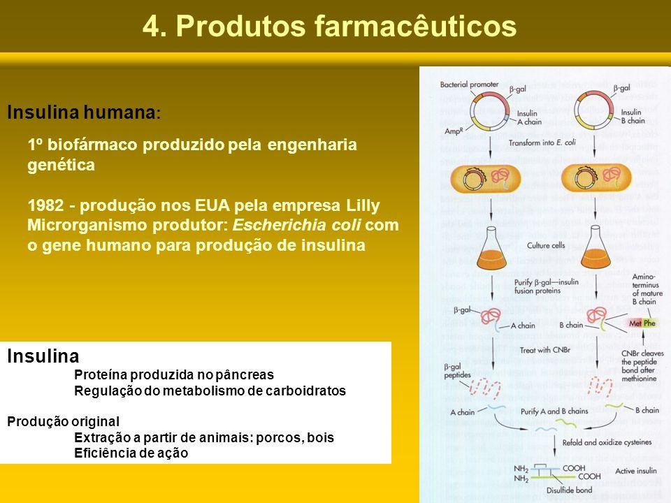 4. Produtos farmacêuticos Insulina humana : 1º biofármaco produzido pela engenharia genética 1982 - produção nos EUA pela empresa Lilly Microrganismo