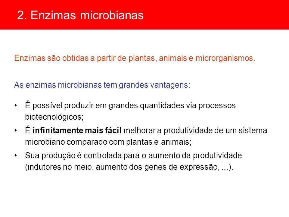 Ácido lático * derivado de múltiplos usos: lactato de sódio: deficiência de cálcio lactato de ferro: tratamento da anemia * matéria prima: amido, melaço, soro de leite * Etapas: hidrólise do amido a glicose (ácidos ou enzimas) C 12 H 22 O 11 + H 2 O2C 6 H 12 O 6 fermentação da glicose 2C 6 H 12 O 6 4CH 3 CHOHCOOH * Microrganismo: Lactobacillus bulgaricus * Resíduo de biomassa: alimentação animal