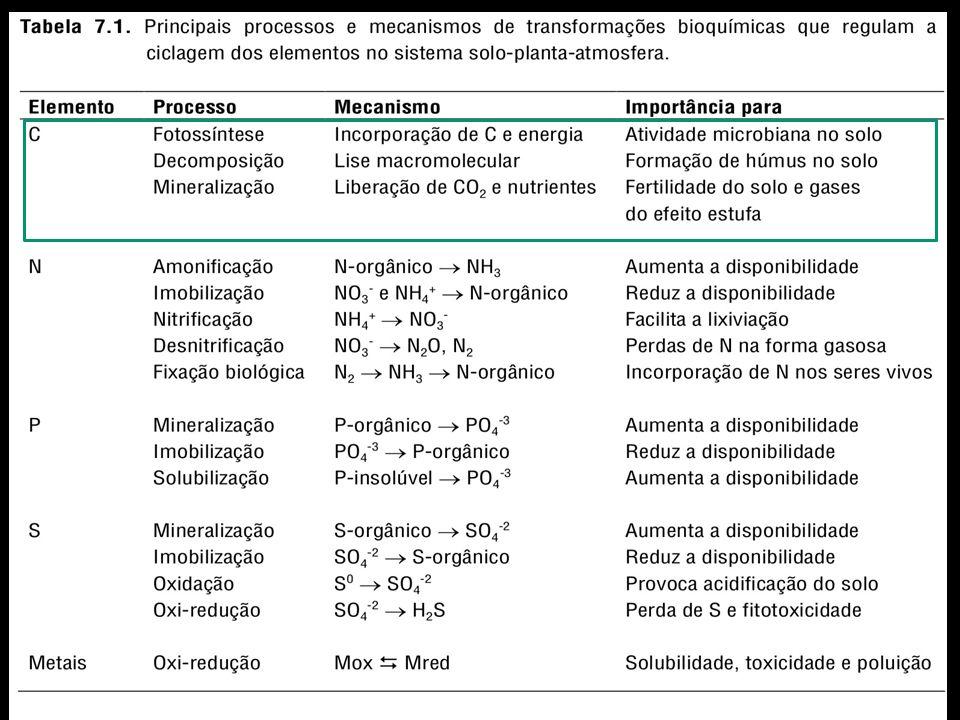 Fatores que Influenciam a Decomposição a)Resíduos com baixo teor de lignina ou compostos fenólicos b)Altos teores de materiais solúveis c)Partículas de tamanho reduzido com baixa relação C:N d)Condições físicas e químicas do solo que maximizem a atividade biológica (temperatura entre 30-35 o C, umidade próxima à capacidade de campo e aeração adequada) e)Ausência de fatores tóxicos no resíduo ou no solo que podem limitar a atividade dos heterotróficos decompositores