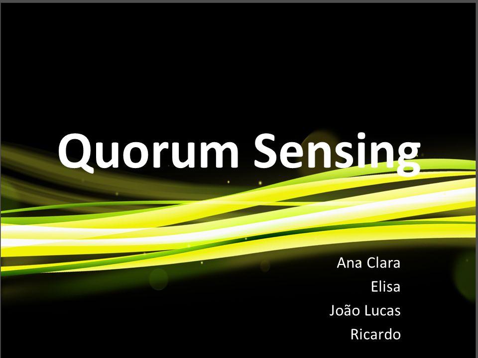 Quorum Sensing Ana Clara Elisa João Lucas Ricardo