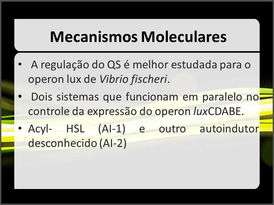 Mecanismos Moleculares A regulação do QS é melhor estudada para o operon lux de Vibrio fischeri. Dois sistemas que funcionam em paralelo no controle d