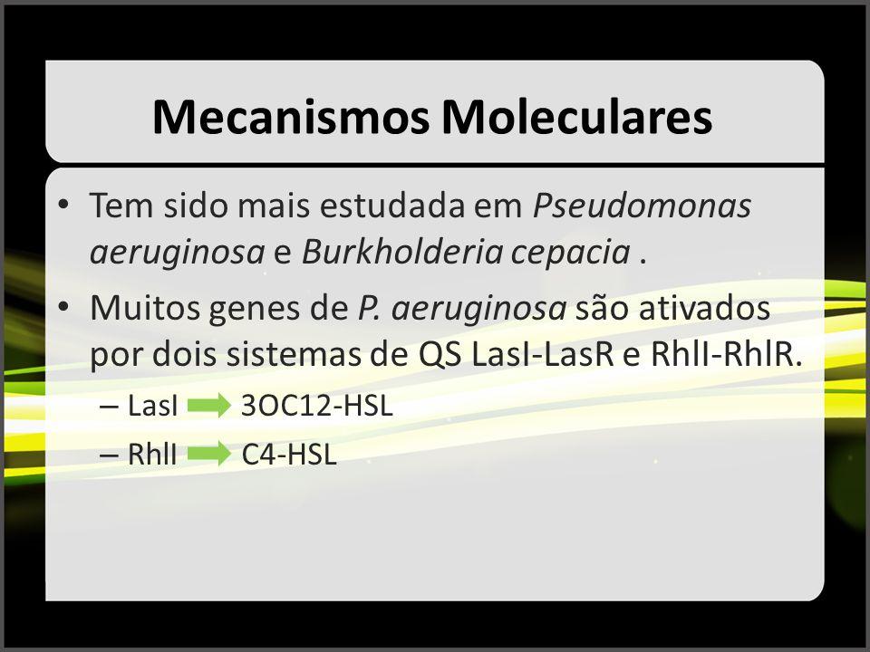 Mecanismos Moleculares Tem sido mais estudada em Pseudomonas aeruginosa e Burkholderia cepacia. Muitos genes de P. aeruginosa são ativados por dois si