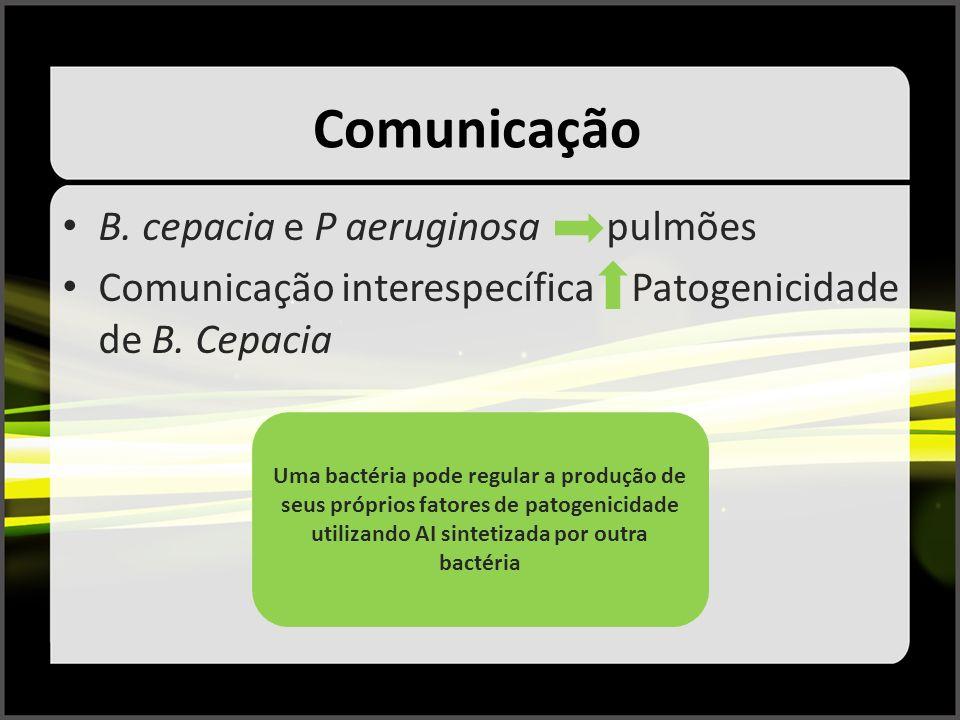 Comunicação B. cepacia e P aeruginosa pulmões Comunicação interespecífica Patogenicidade de B. Cepacia Uma bactéria pode regular a produção de seus pr