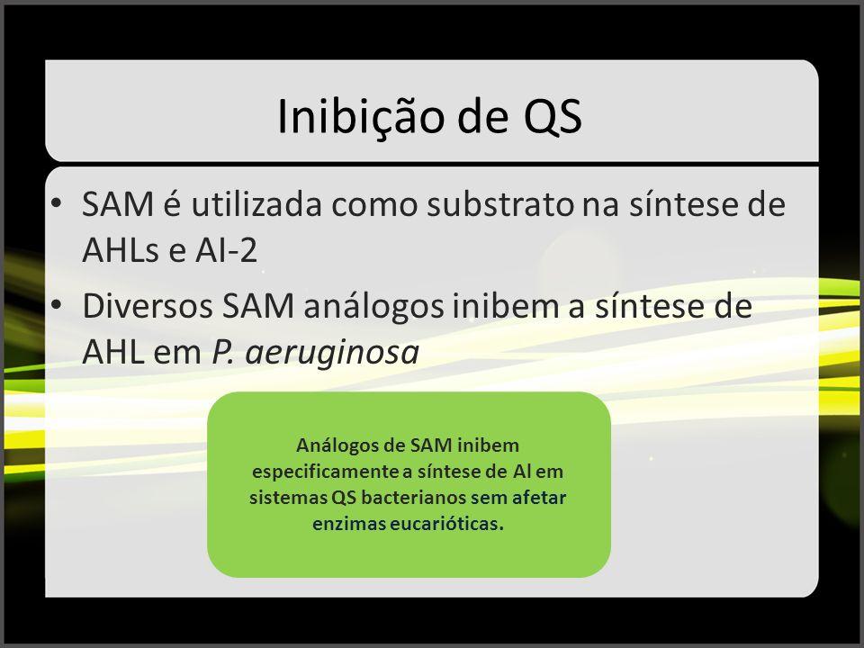Inibição de QS SAM é utilizada como substrato na síntese de AHLs e AI-2 Diversos SAM análogos inibem a síntese de AHL em P. aeruginosa Análogos de SAM