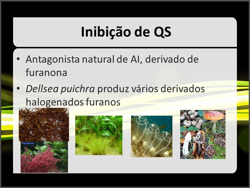 Inibição de QS Antagonista natural de AI, derivado de furanona Dellsea puichra produz vários derivados halogenados furanos
