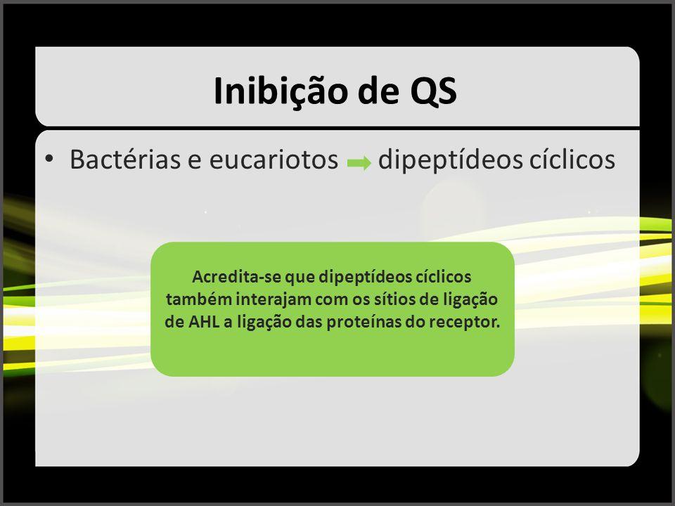 Inibição de QS Bactérias e eucariotos dipeptídeos cíclicos Acredita-se que dipeptídeos cíclicos também interajam com os sítios de ligação de AHL a lig