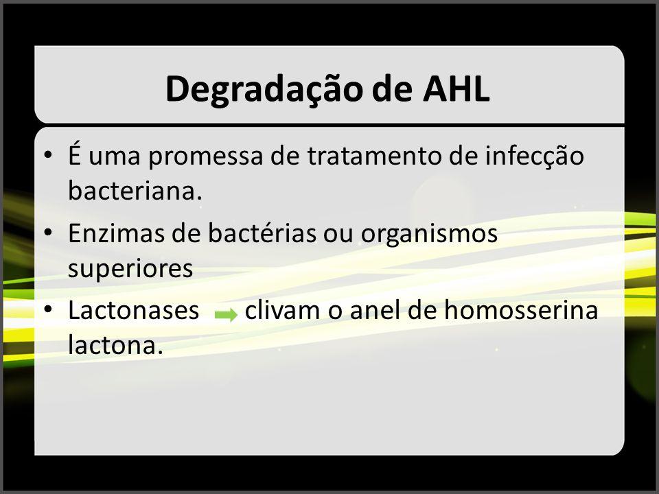 Degradação de AHL É uma promessa de tratamento de infecção bacteriana. Enzimas de bactérias ou organismos superiores Lactonases clivam o anel de homos