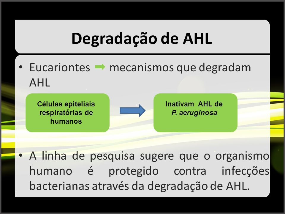 Degradação de AHL Eucariontes mecanismos que degradam AHL A linha de pesquisa sugere que o organismo humano é protegido contra infecções bacterianas a