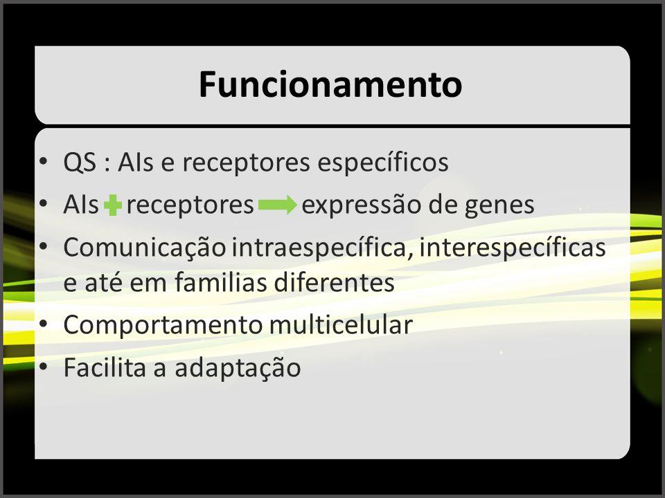 Funcionamento QS : AIs e receptores específicos AIs receptores expressão de genes Comunicação intraespecífica, interespecíficas e até em familias dife