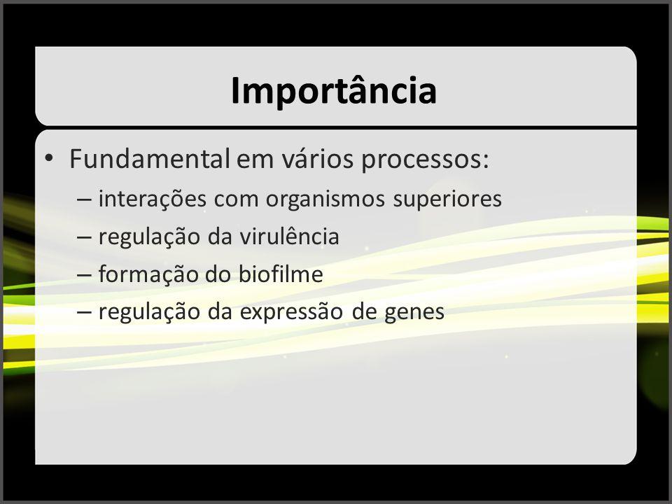 Importância Fundamental em vários processos: – interações com organismos superiores – regulação da virulência – formação do biofilme – regulação da ex