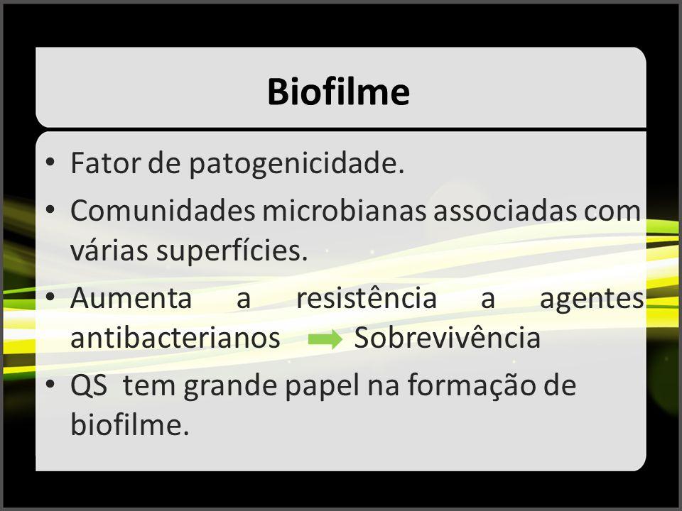 Biofilme Fator de patogenicidade. Comunidades microbianas associadas com várias superfícies. Aumenta a resistência a agentes antibacterianos Sobrevivê