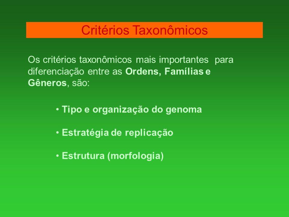Os critérios taxonômicos mais importantes para diferenciação entre as Ordens, Famílias e Gêneros, são: Tipo e organização do genoma Estratégia de repl