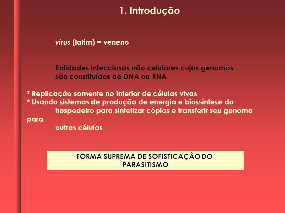 vírus (latim) = veneno Entidades infecciosas não celulares cujos genomas são constituídos de DNA ou RNA * Replicação somente no interior de células vi