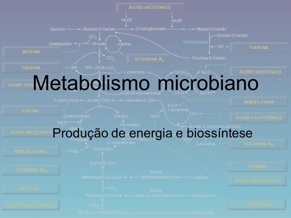 Metabolismo microbiano Produção de energia e biossíntese