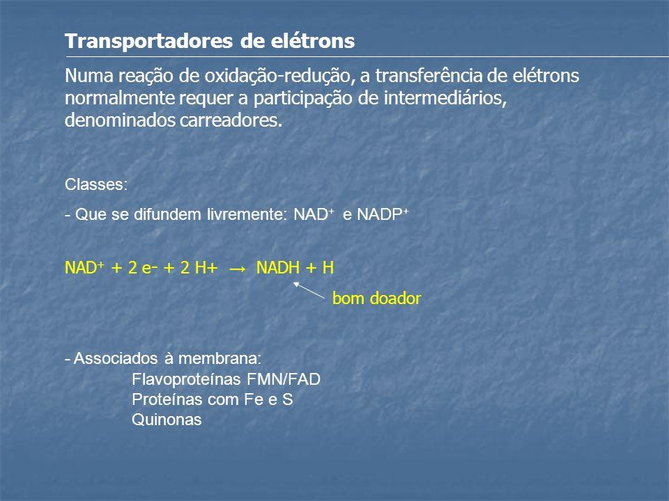 Transportadores de elétrons Numa reação de oxidação-redução, a transferência de elétrons normalmente requer a participação de intermediários, denomina
