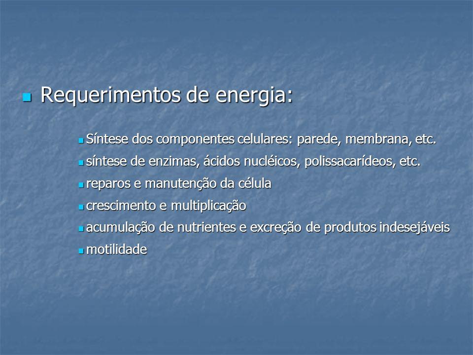 Requerimentos de energia: Requerimentos de energia: Síntese dos componentes celulares: parede, membrana, etc. Síntese dos componentes celulares: pared