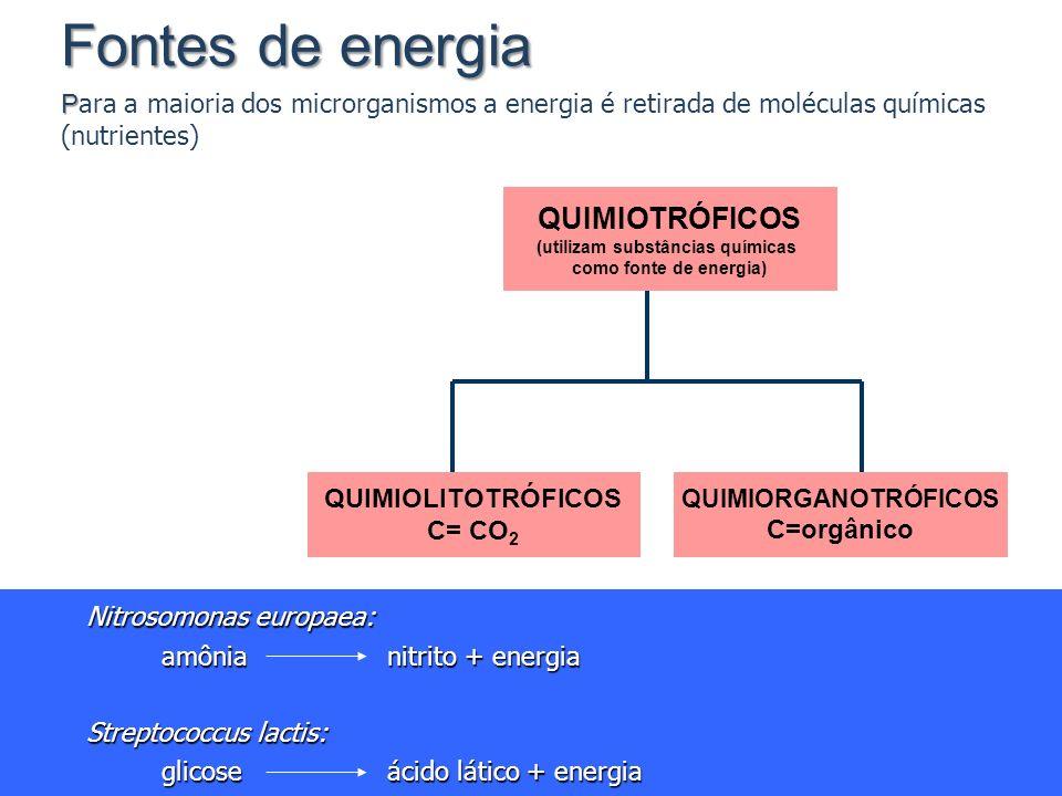 Fontes de energia P Fontes de energia P ara a maioria dos microrganismos a energia é retirada de moléculas químicas (nutrientes) QUIMIOTRÓFICOS (utili