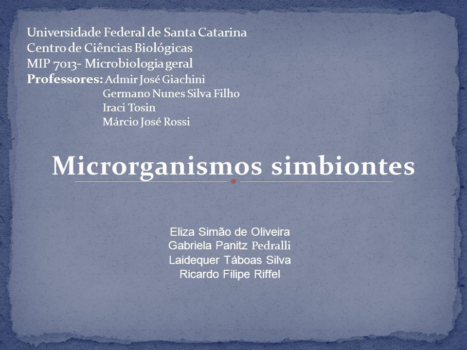 Microrganismos simbiontes Eliza Simão de Oliveira Gabriela Panitz Pedralli Laidequer Táboas Silva Ricardo Filipe Riffel Universidade Federal de Santa
