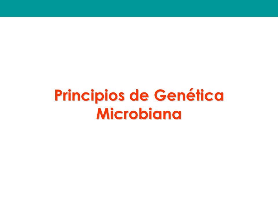 Principios de Genética Microbiana