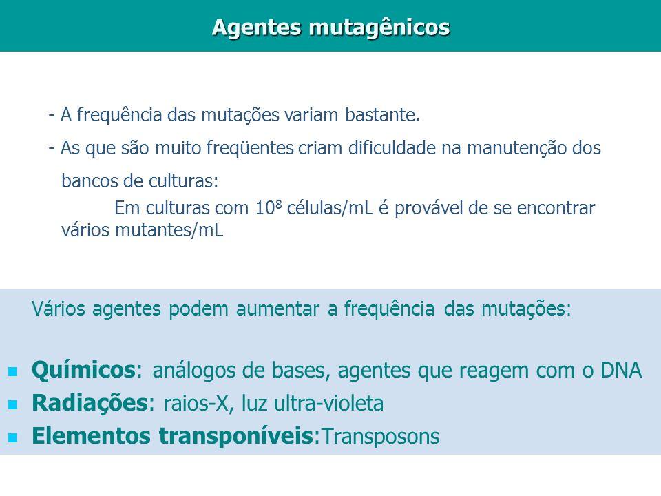 Vários agentes podem aumentar a frequência das mutações: Químicos: análogos de bases, agentes que reagem com o DNA Radiações: raios-X, luz ultra-viole
