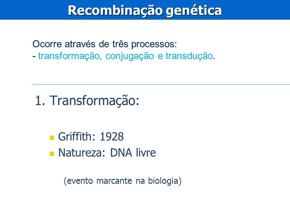 1. Transformação: Griffith: 1928 Natureza: DNA livre (evento marcante na biologia) Recombinação genética Ocorre através de três processos: - transform