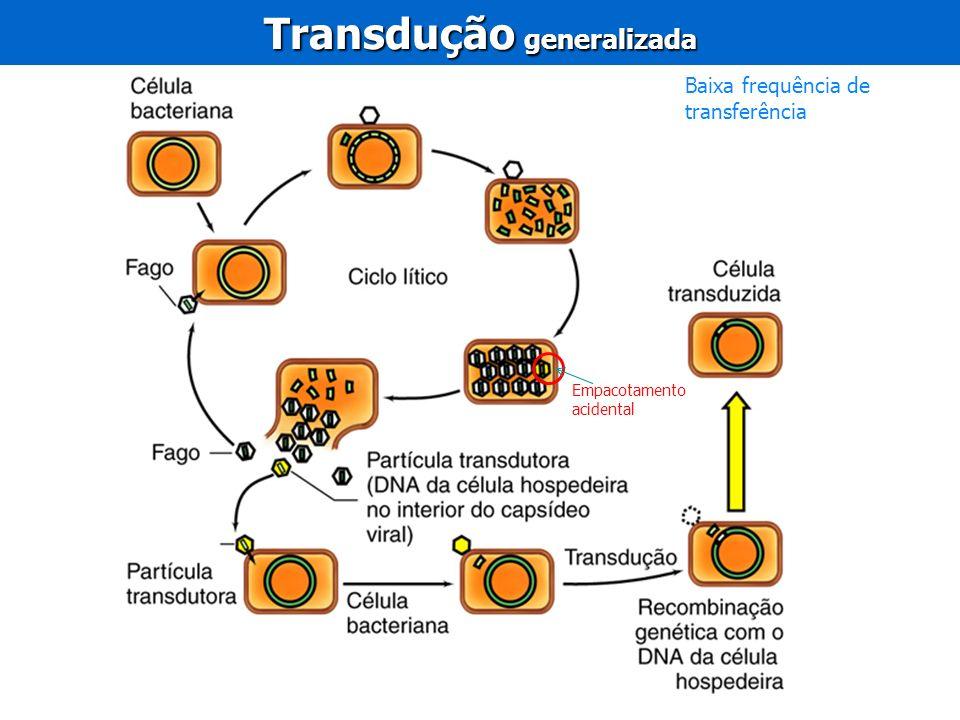 Transdução generalizada Baixa frequência de transferência Empacotamento acidental