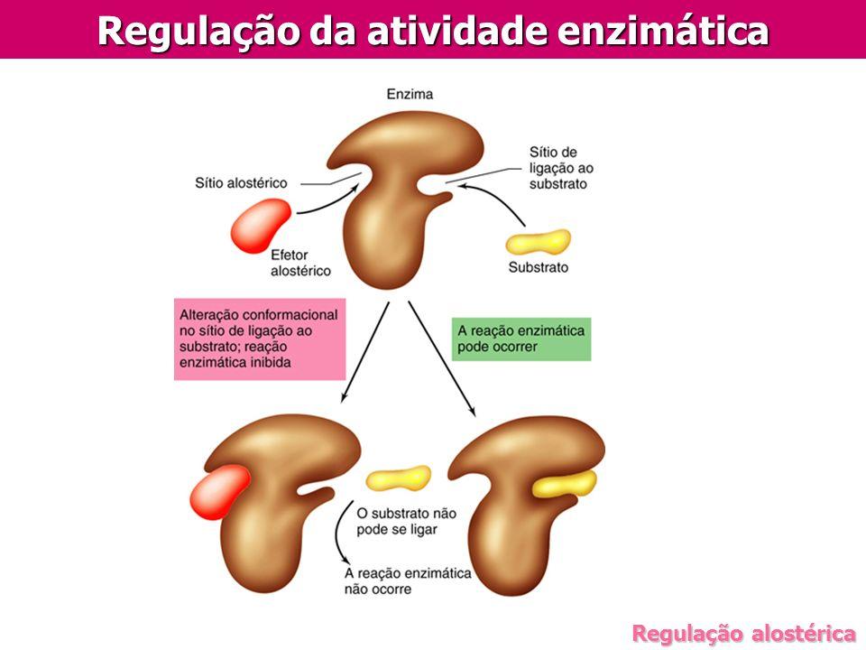 Regulação alostérica Regulação da atividade enzimática