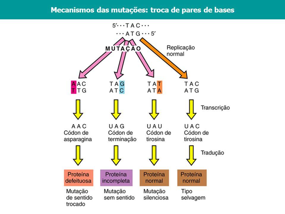 Vários agentes podem aumentar a frequência das mutações: Químicos: análogos de bases, agentes que reagem com o DNA Radiações: raios-X, luz ultra-violeta Elementos transponíveis: Transposons Agentes mutagênicos - A frequência das mutações variam bastante.