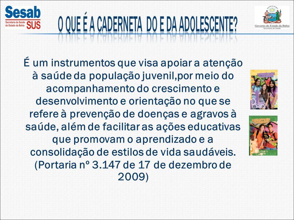 A população adolescente e jovem representa cerca de 30% da população brasileira; Necessidade de desmistificar a crença de que adolescentes e jovens não adoecem; Dados estatísticos apontam para a alta vulnerabilidade dessa população frente a diferentes formas de violência, aumento da incidência de DST/AIDS e elevado índice de gravidez na adolescência.