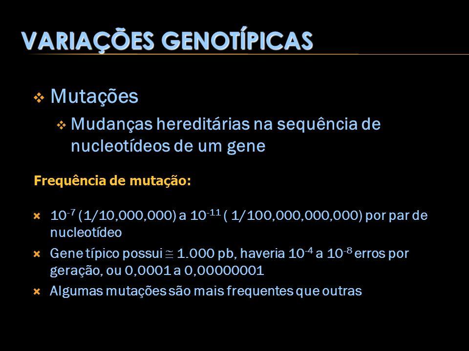 Mutações Mudanças hereditárias na sequência de nucleotídeos de um gene 10 -7 (1/10,000,000) a 10 -11 ( 1/100,000,000,000) por par de nucleotídeo Gene