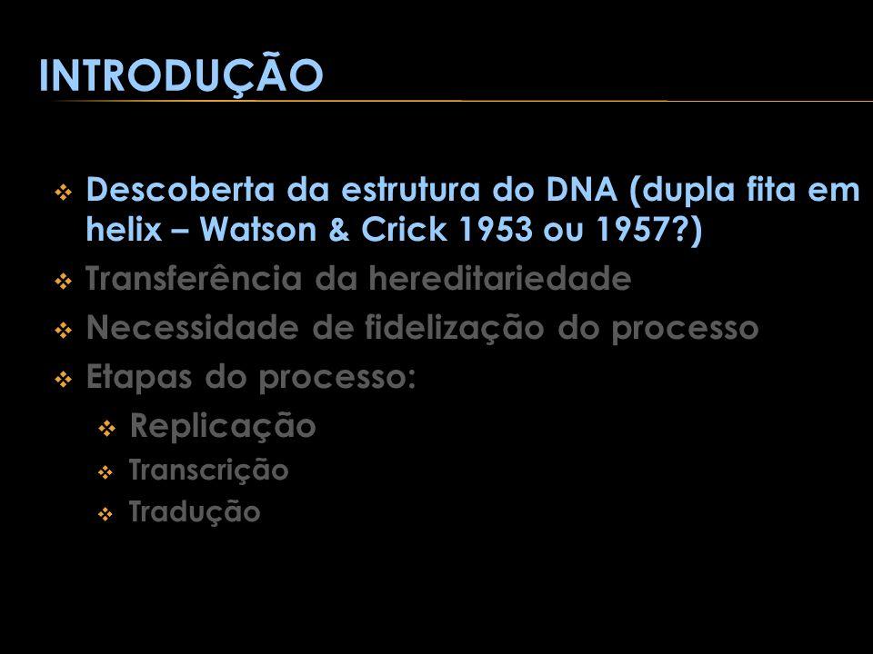 INTRODUÇÃO Descoberta da estrutura do DNA (dupla fita em helix – Watson & Crick 1953 ou 1957?) Transferência da hereditariedade Necessidade de fideliz