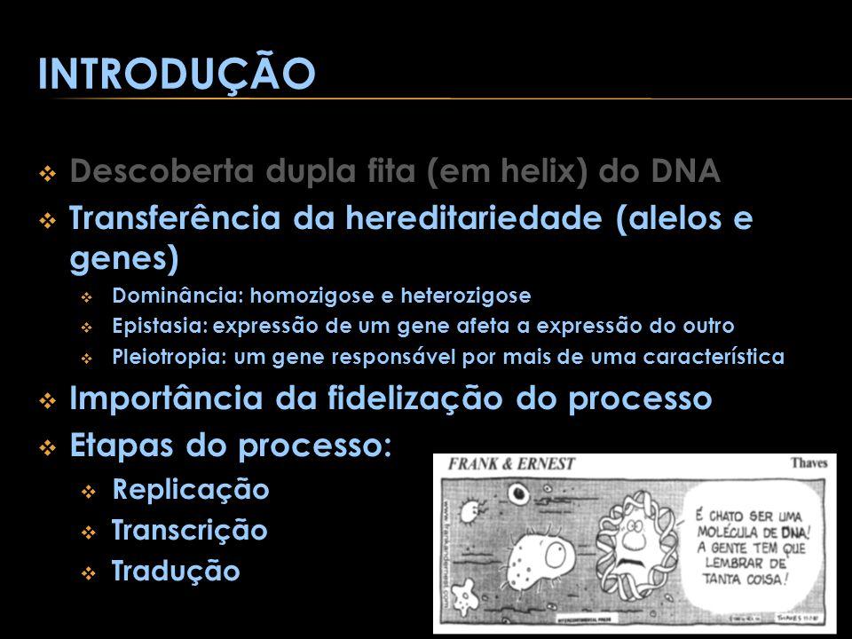 INTRODUÇÃO Descoberta dupla fita (em helix) do DNA Transferência da hereditariedade (alelos e genes) Dominância: homozigose e heterozigose Epistasia: