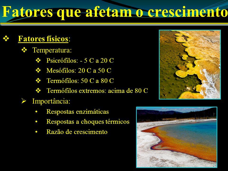 Fatores que afetam o crescimento Fatores físicos: Temperatura: Psicrófilos: - 5 C a 20 C Mesófilos: 20 C a 50 C Termófilos: 50 C a 80 C Termófilos extremos: acima de 80 C Importância: Respostas enzimáticas Respostas a choques térmicos Razão de crescimento 24