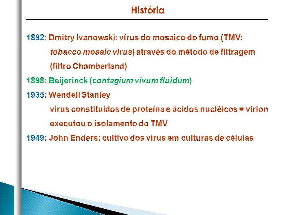 1892: Dmitry Ivanowski: vírus do mosaico do fumo (TMV: tobacco mosaic virus) através do método de filtragem (filtro Chamberland) 1898: Beijerinck (con