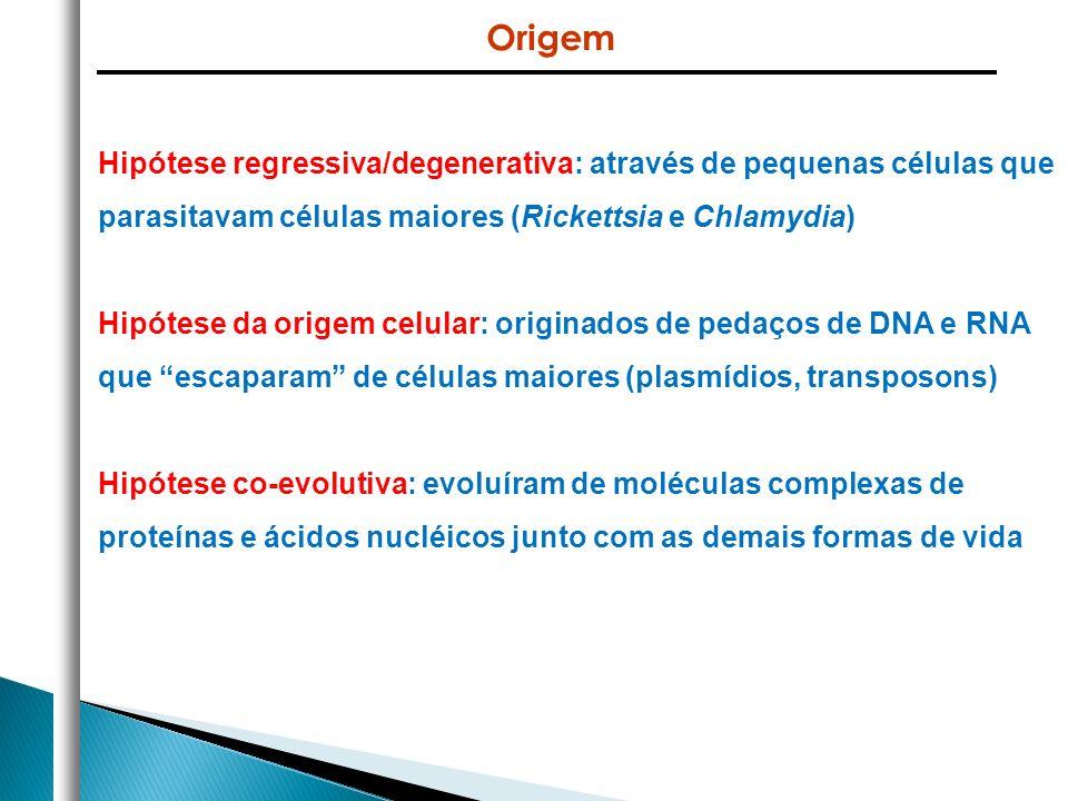 Hipótese regressiva/degenerativa: através de pequenas células que parasitavam células maiores (Rickettsia e Chlamydia) Hipótese da origem celular: ori