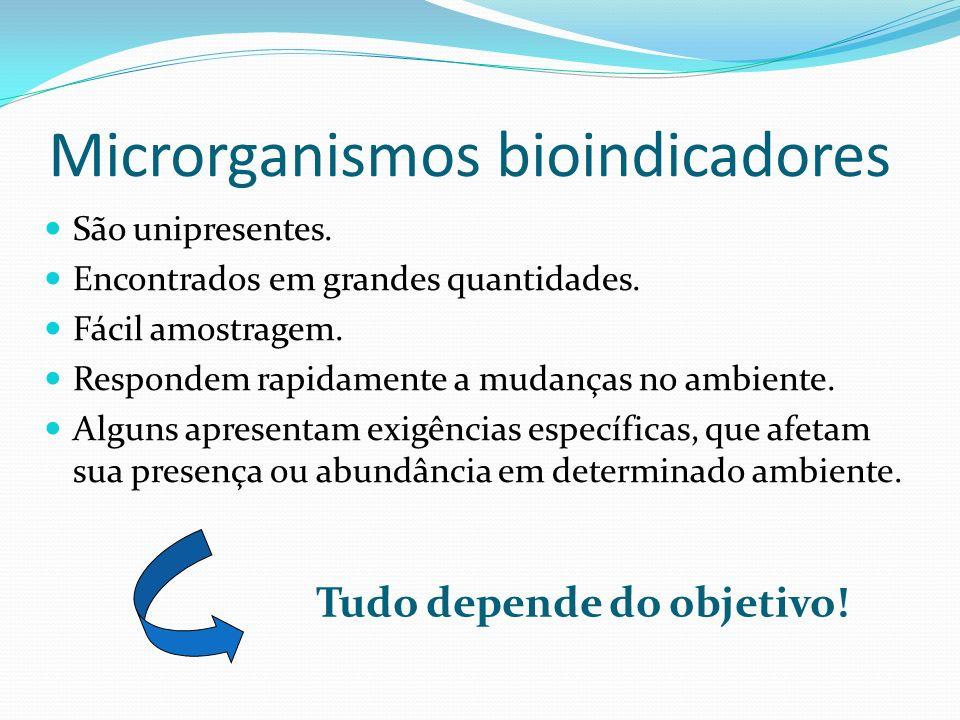 Microrganismos bioindicadores São unipresentes. Encontrados em grandes quantidades. Fácil amostragem. Respondem rapidamente a mudanças no ambiente. Al