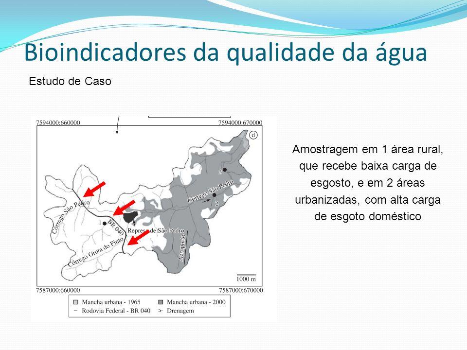 Bioindicadores da qualidade da água Estudo de Caso Amostragem em 1 área rural, que recebe baixa carga de esgosto, e em 2 áreas urbanizadas, com alta carga de esgoto doméstico