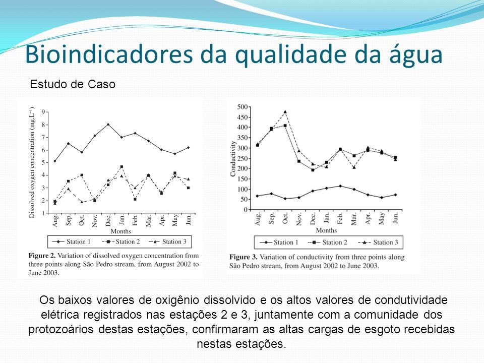 Bioindicadores da qualidade da água Estudo de Caso Os baixos valores de oxigênio dissolvido e os altos valores de condutividade elétrica registrados n