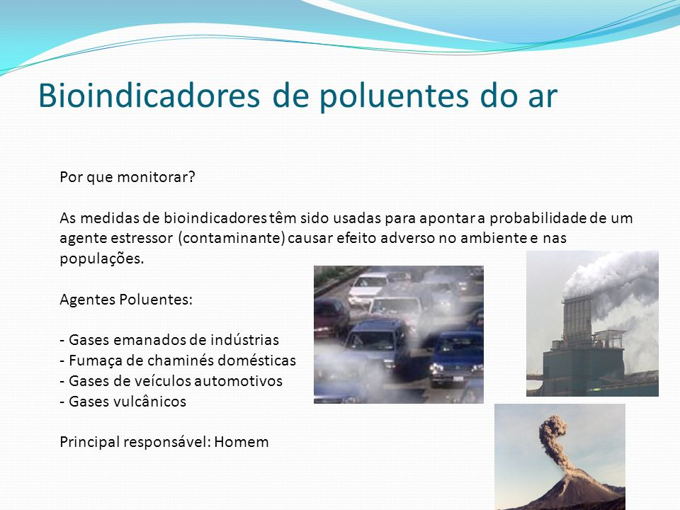 Bioindicadores de poluentes do ar Por que monitorar? As medidas de bioindicadores têm sido usadas para apontar a probabilidade de um agente estressor