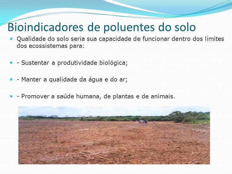Bioindicadores de poluentes do solo Qualidade do solo seria sua capacidade de funcionar dentro dos limites dos ecossistemas para: - Sustentar a produtividade biológica; - Manter a qualidade da água e do ar; - Promover a saúde humana, de plantas e de animais.