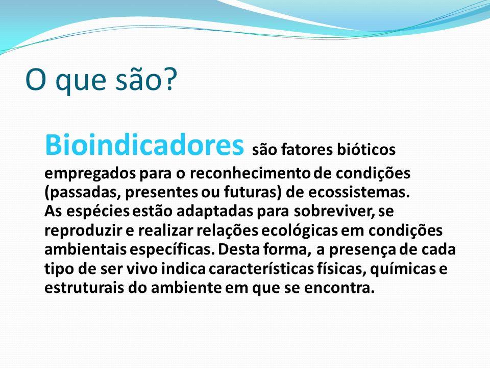O que são? Bioindicadores são fatores bióticos empregados para o reconhecimento de condições (passadas, presentes ou futuras) de ecossistemas. As espé