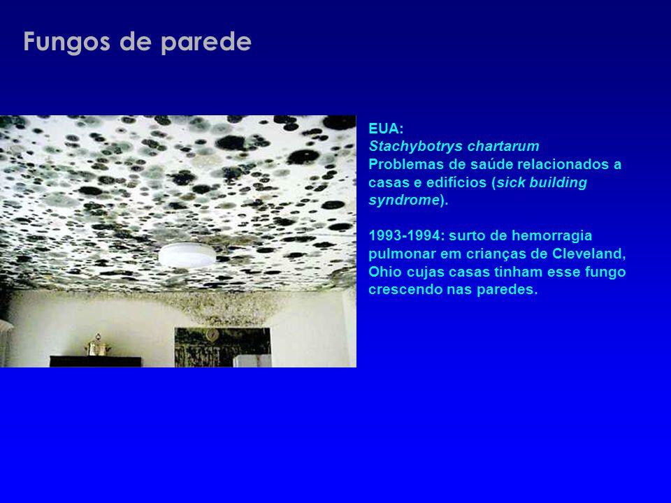 EUA: Stachybotrys chartarum Problemas de saúde relacionados a casas e edifícios (sick building syndrome). 1993-1994: surto de hemorragia pulmonar em c