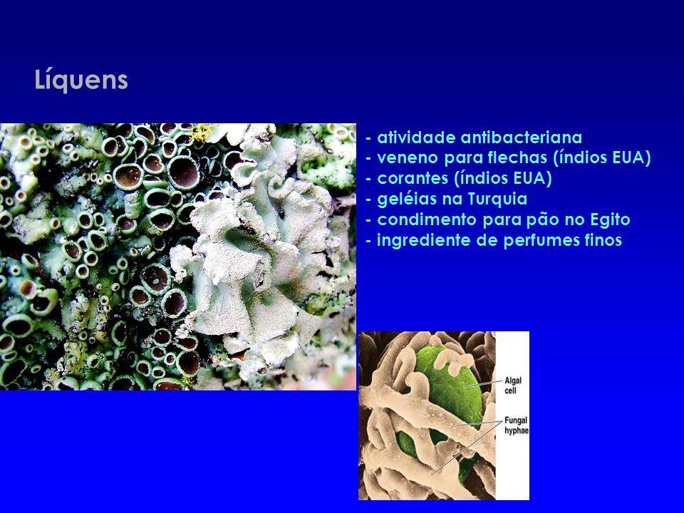 - Controle biológico de doenças e pragas Ex.